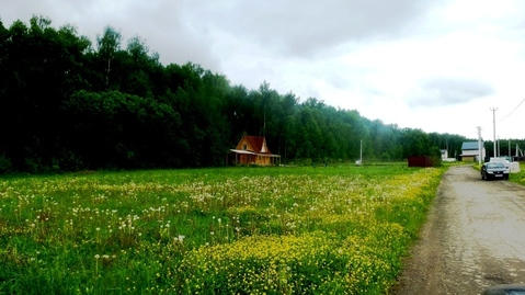 11,5 соток в окружении леса в 65 км от МКАД по Каширке. Свет/охрана - Фото 1