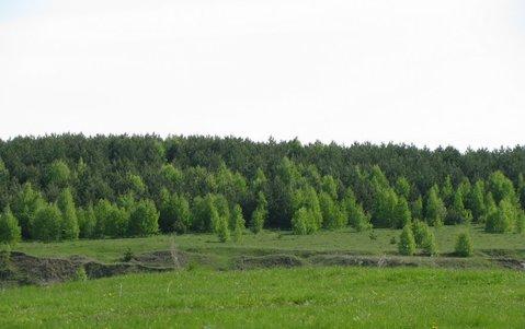 Семиозерье , Заполье , оз.Красавица - Фото 1