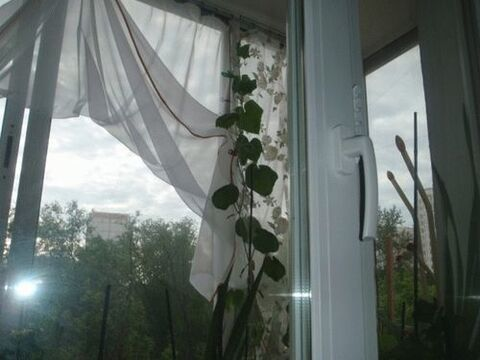 Продажа квартиры, м. Перово, Ул. Плеханова - Фото 2
