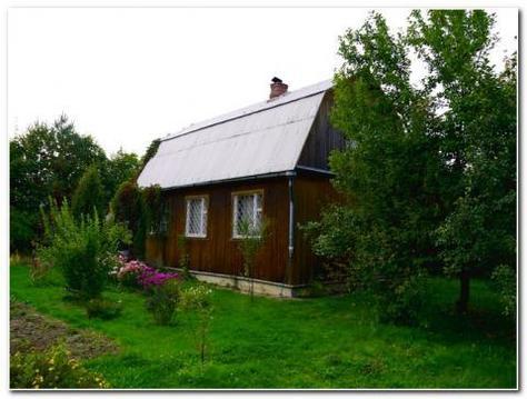 Зимняя дача в Ватутинках ! Сосновый бор и центральные коммуникации - Фото 2