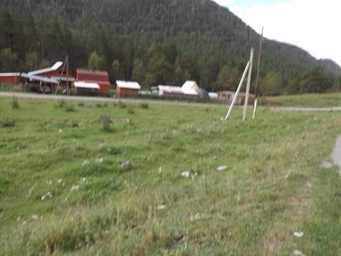 Земельный участок под ИЖС в Горном Алтае - Фото 3