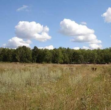 Продается земельный участок, Перхурово, 25 сот - Фото 1