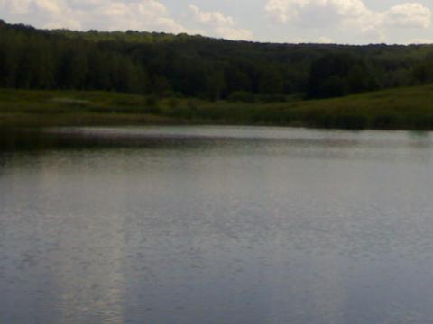 Участок с большим прудом для базы отдыха - Фото 3