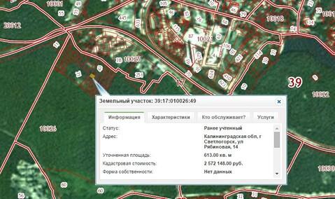 Продажа участка, Светлогорск, Светлогорский район, Рябиновая 14