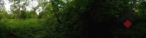 Продается участок. , Одинцово Город, Красногорское шоссе - Фото 5