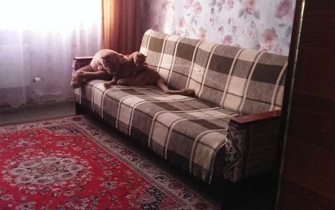 Комната м.Домодедовская - Фото 3