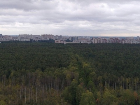 Продажа квартиры, м. Озерки, Ул. Лиственная - Фото 3