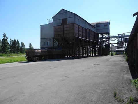 Завод по производству комбикормов - Фото 3
