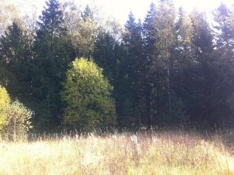 Участок на опушке леса - Фото 2