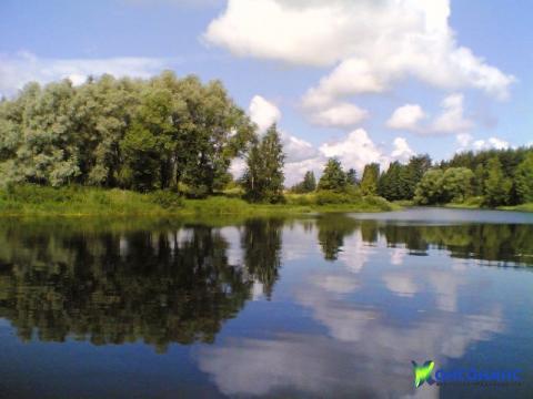 Земельный участок в д. Лобастово Некрасовского района - Фото 2