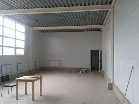 Сдам складское помещение 940 кв.м, м. Ломоносовская - Фото 5