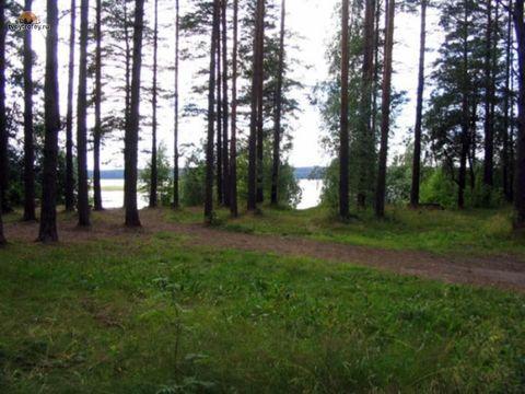 Первомайское+4 км, Цвелодубово - Фото 1