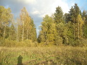 Земельный участок д. Дунино вблизи Можайского района - Фото 1