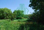 Участок в д. Ильицино Зарайского района 24 сот - Фото 1