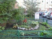 1-комн. квартира в г.Санкт-Петербург - Фото 3