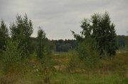 Участок 24 сот, Осташковское ш, 25 км от МКАД, д. Витенево. - Фото 5