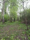 Земельный участок 41 сотка для ИЖС - Фото 2