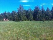 Участок 11 соток, 52 км от МКАД, ПМЖ в д. Асташково, эл-во, соснов.лес - Фото 2