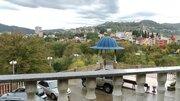 Городская дача в Центральном районе Сочи - Фото 3