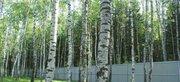 Лесной участок с выходом в лес 20 соток. Москва. - Фото 2