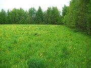 Продажа в собственность участка под строительство азс с комплексом . - Фото 3