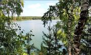 15 соток (лпх) в с.Городец, рядом лес, недалеко озера и р. Ока - Фото 1