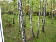 Дом в г. Чехов с центральными коммуникациями на 34 сотках с лесом - Фото 3