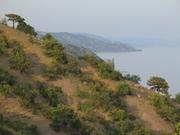 Продам земельный участок в Алуште