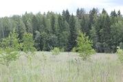 Прилесной земельный участок в д. Терехунь, Московская область - Фото 4