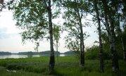 Первая линия р.Волга, участок 340 сот, ИЖС, лес - Фото 1