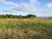 Участок 1га на берегу(100м до воды) Яузского водохранилища 160км МКАД - Фото 1