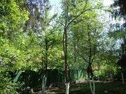 Продам имение в Михайловском (Шишкин лес) - Фото 4