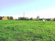 85 га в деревне по Новорижскому земля сельхозназначения - Фото 2