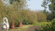 Продам дом с зем.участком в Городище Рыбновского района - Фото 3