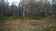 Продам участок 10 сот в московской области сергиево посадский район - Фото 2