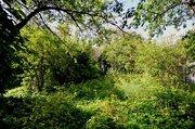 Продается участок на берегу Канала им. Москвы СНТ Клязьма - Фото 4