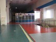 Аренда универсального (торгового) помещения, в тк «Светлановский». - Фото 5