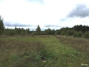 Отличный участок около леса в с. Пирочи. Коммуникации рядом. - Фото 2