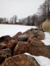 Шикарный участок на берегу Финского залива - Фото 5