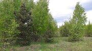 Продается участок в массиве Белоостров - Фото 1