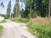 Киевское ш. 20 км от МКАД, участок 15 сот, Новая Москва, Первомайское - Фото 2