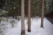 Лесные участки в кп Самар-1