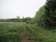 Участок 10с в СНТ рядом с Дмитровым, недорого, 55 км от МКАД - Фото 3
