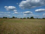 Продажа земельного участка д. Тимохино, Егорьевский р-н - Фото 3