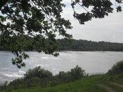 Живописный лесной земельный участок на 1-ой линии реки Ока, д. Лужки - Фото 5