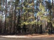 Продажа земельного участка территория бывшего Пансионата в д.Михали - Фото 2