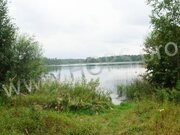 Земля с/х назначения в кимрском районе д. Сотское - Фото 2