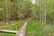 Участок 24 сотки на первой линии Истринского водохранилища - Фото 4