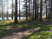 Десногорское водохранилище. Земельные участки на берегу - Фото 3