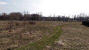 Купить участок СНТ садовод новая усмань - Фото 2